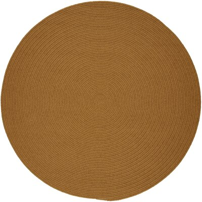 Handmade Gold Indoor/Outdoor Area Rug Rug Size: Round 10