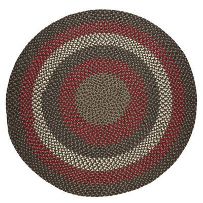 Handmade Indoor/Outdoor Area Rug Rug Size: Round 4