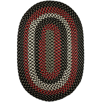 Handmade Indoor/Outdoor Area Rug Rug Size: 4 x 6