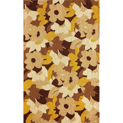 Tan Indoor/Outdoor Area Rug Rug Size: 26 x 36