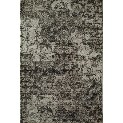 Charcoal Area Rug Rug Size: Runner 23 x 710