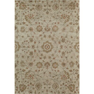 Tan Area Rug Rug Size: Round 53