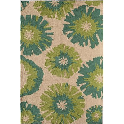 Light Green Indoor/Outdoor Area Rug Rug Size: Round 76
