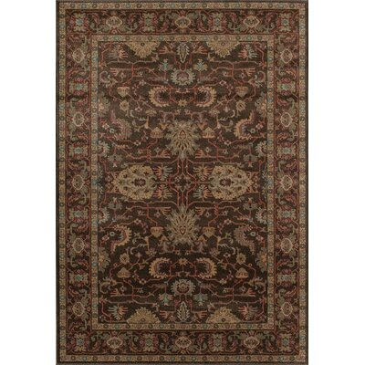 Aztec Brown Area Rug Rug Size: Round 53