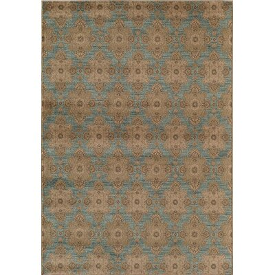 Light Blue/Gray Area Rug Rug Size: Round 53
