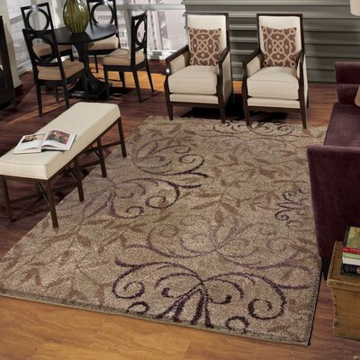 Dakota Dorian Brown Area Rug Rug Size: 710 x 1010