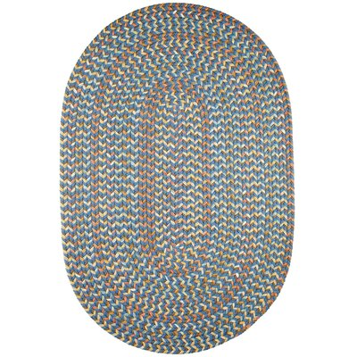 Handmade Blue Indoor/Outdoor Area Rug Rug Size: Round 6