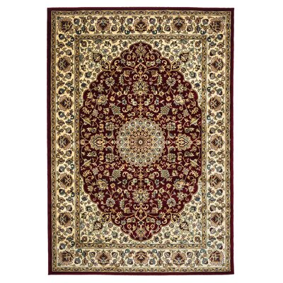 Brown/Red Area Rug Rug Size: Rectangle 53 x 77
