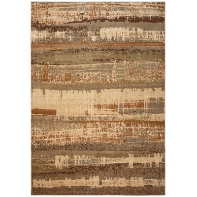 Brown Area Rug Rug Size: Rectangle 53 x 77