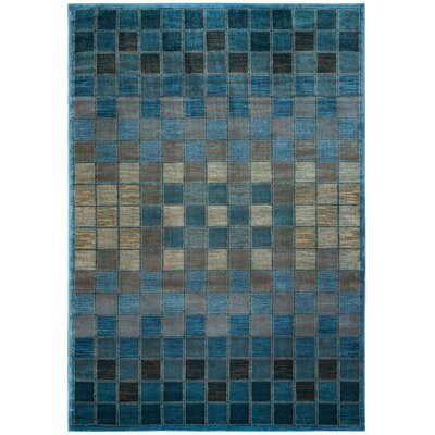 Blue/Grey Area Rug Rug Size: Rectangle 53 x 33