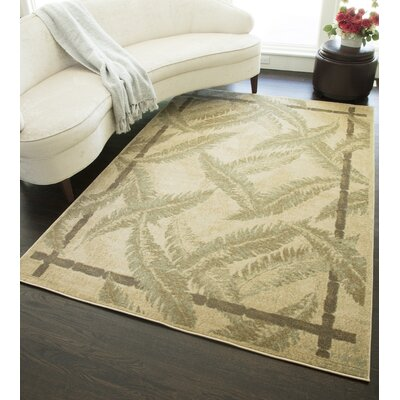 Ivory Area Rug Rug Size: Rectangle 53 x 710