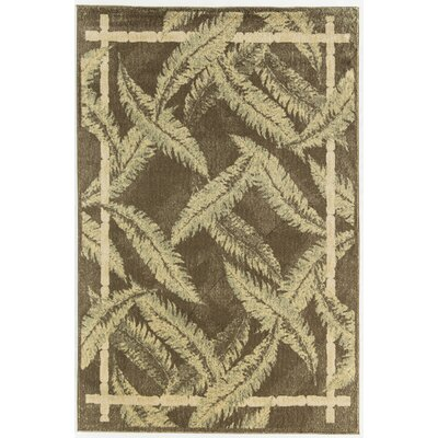 Ivory Area Rug Rug Size: Rectangle 2 x 3