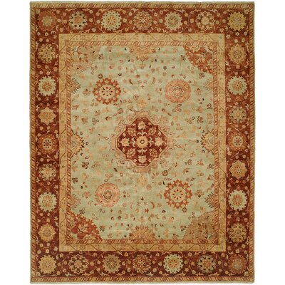 Gudur Hand-Knotted Pale Pistachio/Hopi Clay Area Rug Rug Size: 6 x 9