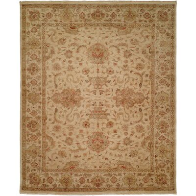 Gurdaspur Hand-Knotted Earth Tones Area Rug Rug Size: Rectangle 6 x 9