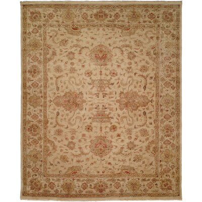 Gurdaspur Hand-Knotted Earth Tones Area Rug Rug Size: 6 x 9