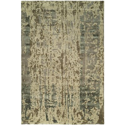 Dhuri Hand-Tufted Green/Brown Shadow Area Rug Rug Size: 36 x 56