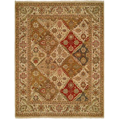 Fazilka Hand-Knotted Area Rug Rug Size: Rectangle 4 x 6