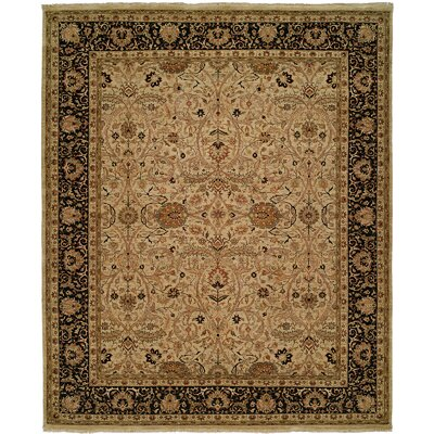 Diphu Hand-Knotted Ivory/Black Area Rug Rug Size: 5 x 7