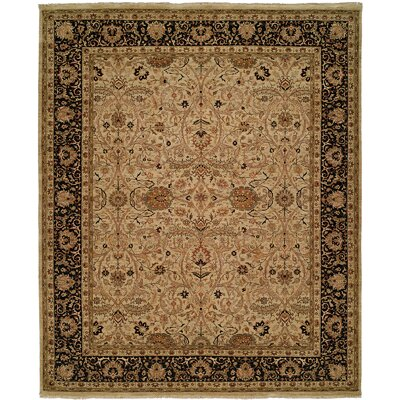 Diphu Hand-Knotted Ivory/Black Area Rug Rug Size: 6 x 9