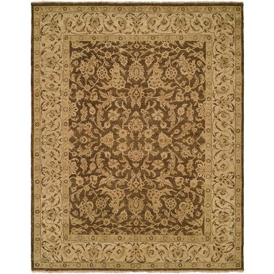 Fazilka Hand-Knotted Hazelnut/Sahara Area Rug Rug Size: Rectangle 4 x 6