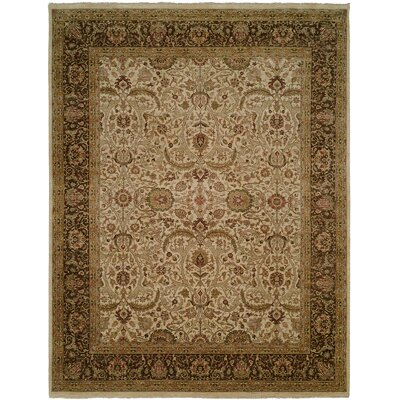 Diphu Hand-Knotted Ivory/Brown Area Rug Rug Size: 6 x 9