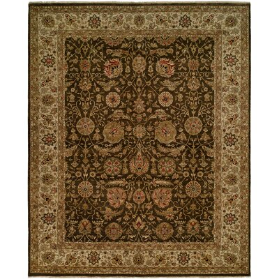 Diphu Hand-Knotted Brown/Ivory Area Rug Rug Size: 4 x 6