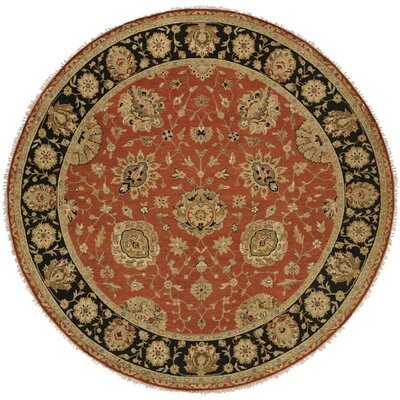 Forbesganj Hand-Knotted Rust/Black Area Rug Rug Size: Round 10