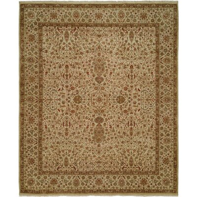 Diphu Hand-Knotted Ivory Area Rug Rug Size: 5 x 7