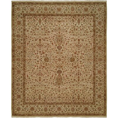 Diphu Hand-Knotted Ivory Area Rug Rug Size: 6 x 9