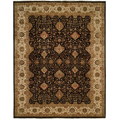Diphu Hand-Knotted Black/Ivory Area Rug Rug Size: Rectangle 3 x 5