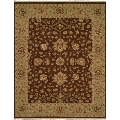 Dhenkanal Hand-Knotted Brown / Gold Area Rug Rug Size: 4 x 6