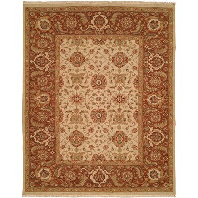 Forbesganj Hand-Knotted Ivory / Brown Area Rug Rug Size: Runner 26 x 12