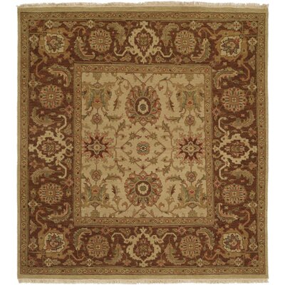 Forbesganj Hand-Knotted Ivory / Brown Area Rug Rug Size: Square 6