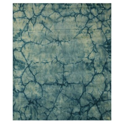 Jagtial Hand-Woven Blue Area Rug Rug Size: Rectangle 4 x 6