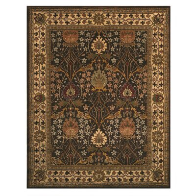 Jamnagar Hand-Tufted Area Rug Rug Size: Rectangle 4 x 6