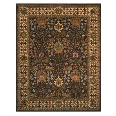 Jamnagar Hand-Tufted Area Rug Rug Size: 6 x 9