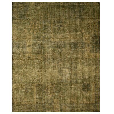 Lalsot Hand-Woven Green Area Rug Rug Size: 6 x 9