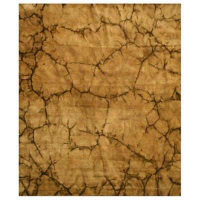 Lanka Hand-Woven Brown Area Rug Rug Size: 5 x 8