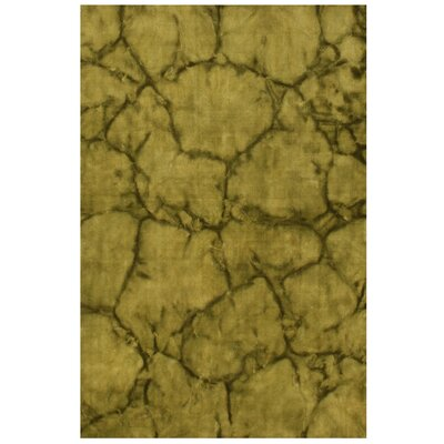 Lar Hand-Woven Green Area Rug Rug Size: 4 x 6
