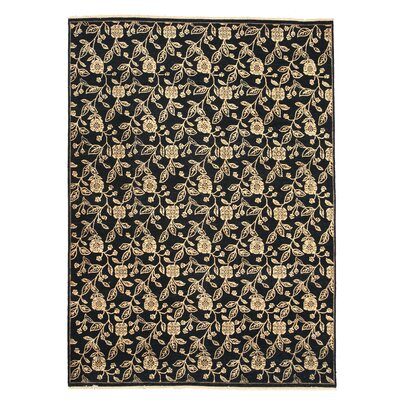 Dabwali Hand-Knotted Black Area Rug