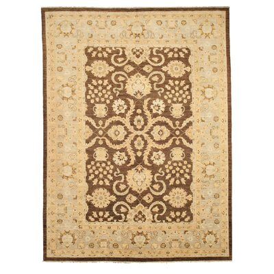 Manvi Hand-Knotted Brown Area Rug