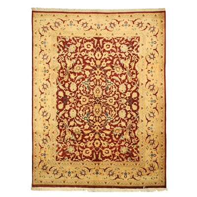 Mapusa Hand-Knotted Red Area Rug