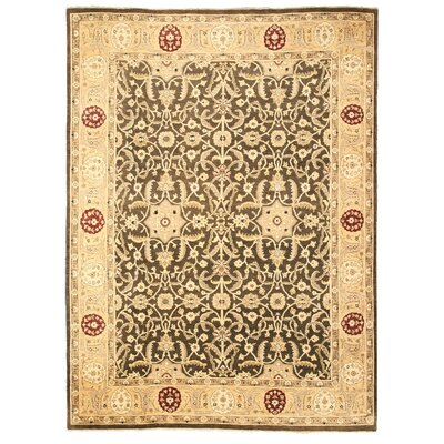 Masaurhi Hand-Knotted Beige/Gray Area Rug