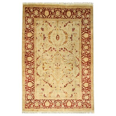 Hand-Knotted Brown/Beige Area Rug