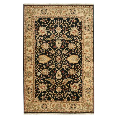 Hand-Knotted Black/Beige Area Rug