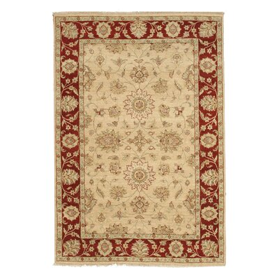 Hand-Knotted Beige/Red Area Rug