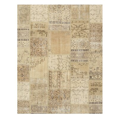 Nasirabad Hand-Knotted Beige Area Rug