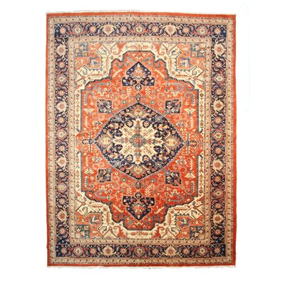 Hand-Knotted Blue/Orange Area Rug