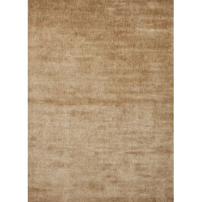 Patur Hand-Loomed Warm Taupe Area Rug Rug Size: Rectangle 9 x 13