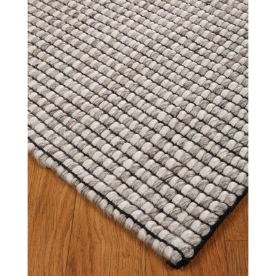 Purna Hand-Woven White/Gray Area Rug Rug Size: Rectangle 4 x 6